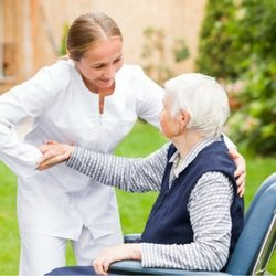 Aged Care Online Courses Shutterstock