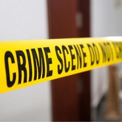 Criminology Online Courses Shutterstock