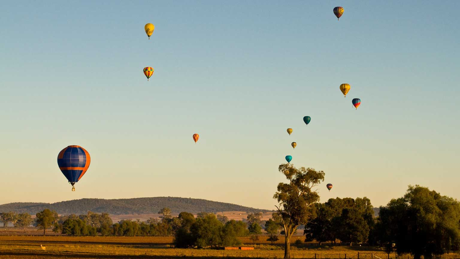 Australian Hot Air Ballooning Championship held in Canowindra, and it shows balloons approaching one of designated targets during morning flight.