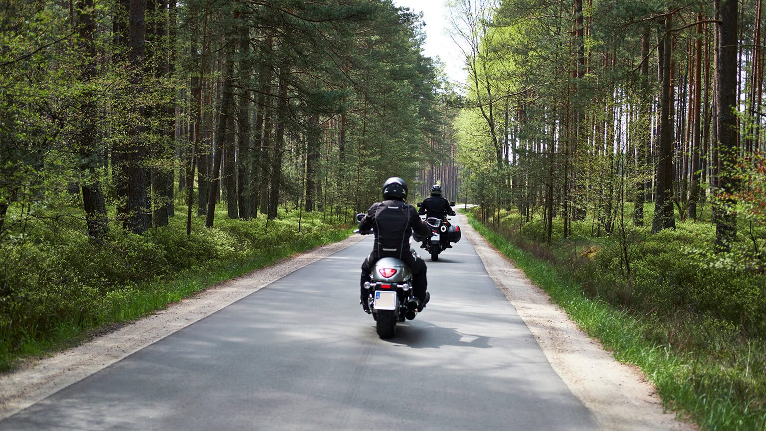 Motorcycles in the forest