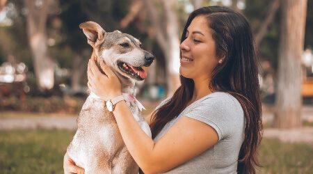 pet-insurance-1