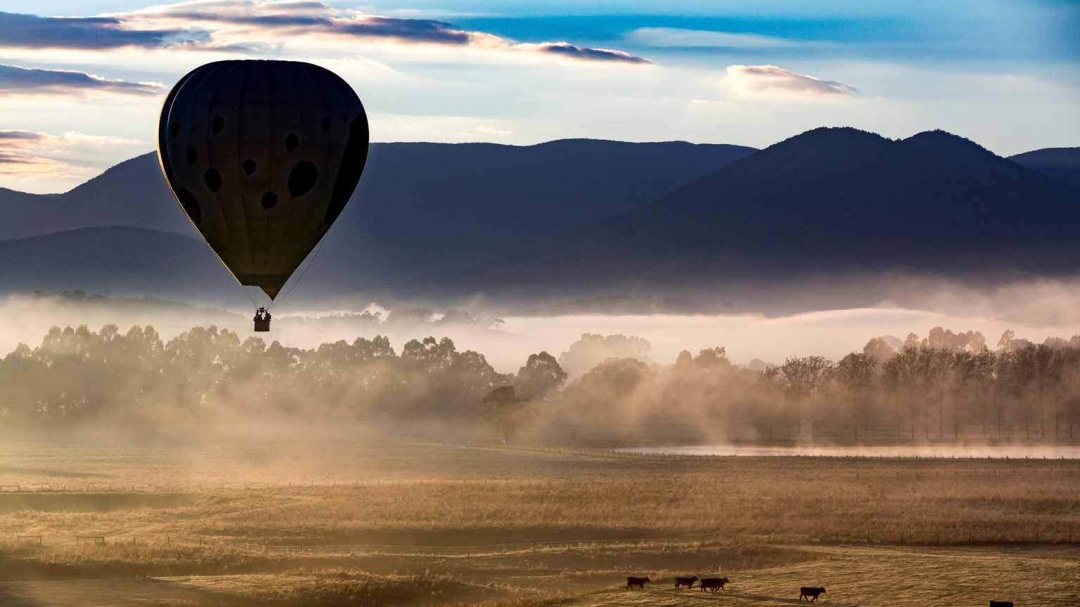 Hot air ballooning is a popular activity for visitors to the Yarra Valley, one of Victoria's wine growing regions.  Passengers on winter flights are often rewarded with wonderfully misty mornings.