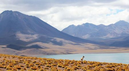 Chile travel money guide