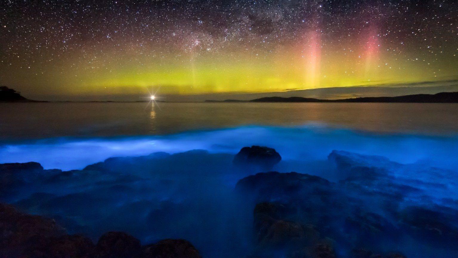 Bioluminescence in Tasmania with Aurora Borelis.