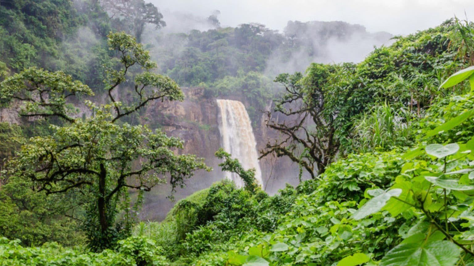 Ekom waterfall in Cameroon