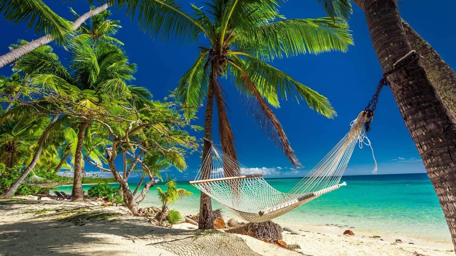 Hammock in Fiji beach