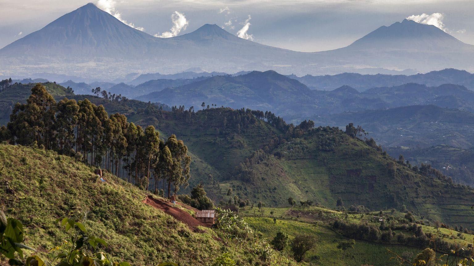 National Volcanoes Park, Rwanda