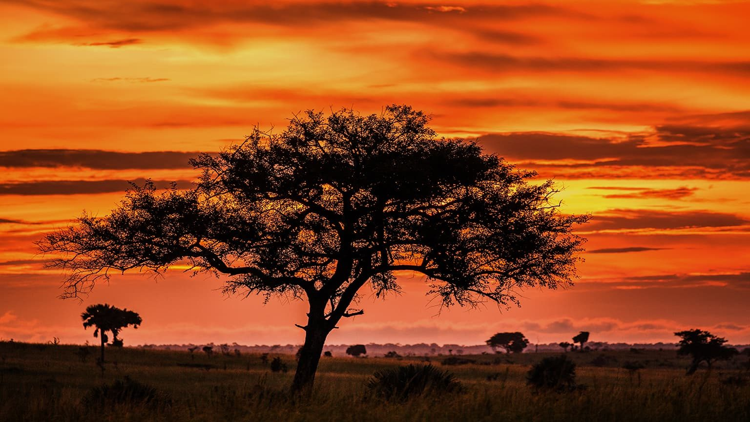 Sunset in Murchison Falls National Park, Uganda