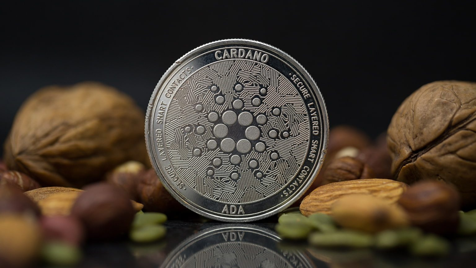 Cardano cryptocurrency physical coin