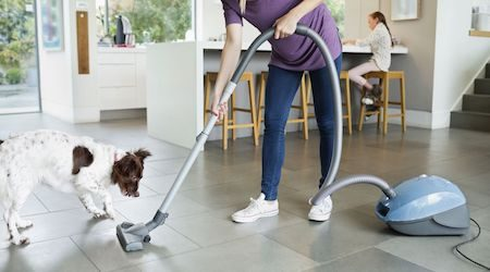Compare barrel vacuum cleaners: How to find the right model for your home