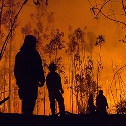 FireServicesBushfire_GettyImages_250x250