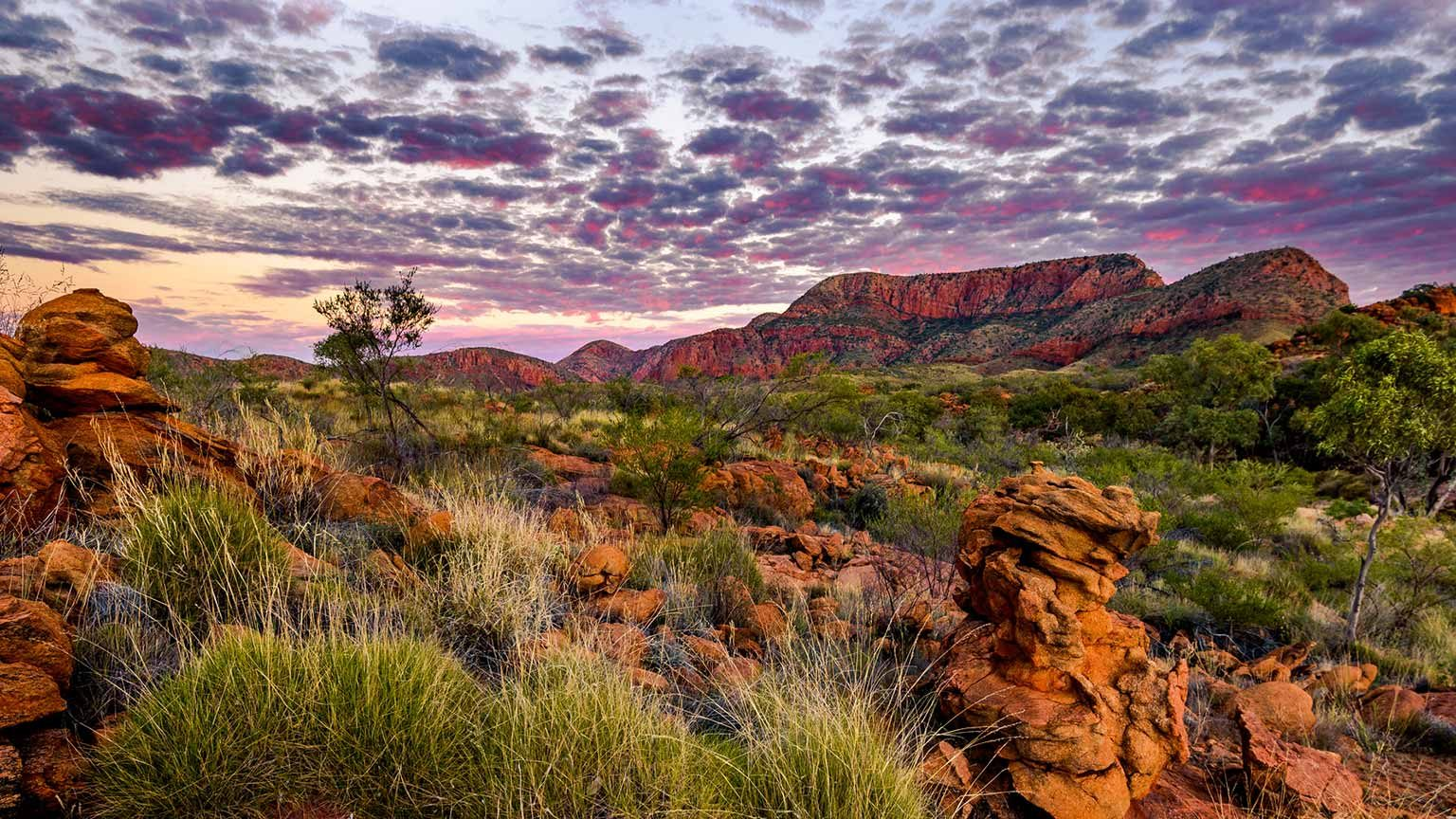 MacDonnell Ranges near Alice Springs, Northern Territory