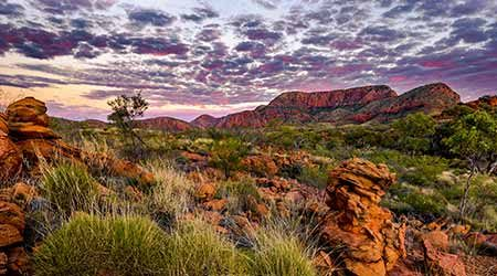 Cheap Alice Springs flights to book in 2020