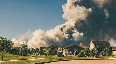 What to do with your home insurance if you've been impacted by a bushfire