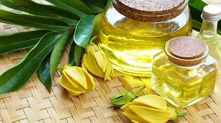 Where to buy ylang ylang oil online