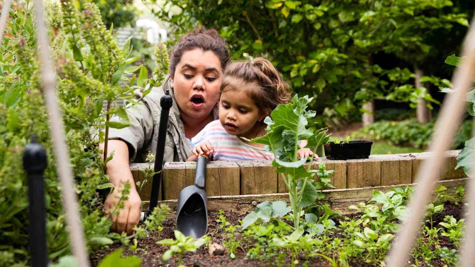 Indigenous Australian family with 2 children living a sustainable suburban Australian lifestyle.