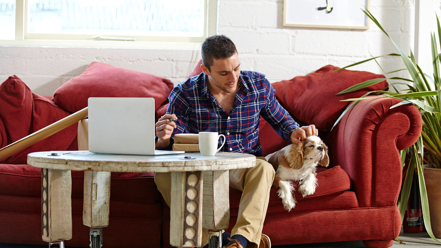man writing address on parcels whilst petting dog
