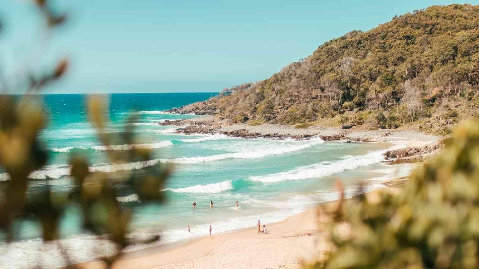 Beach in Noosa, Queensland