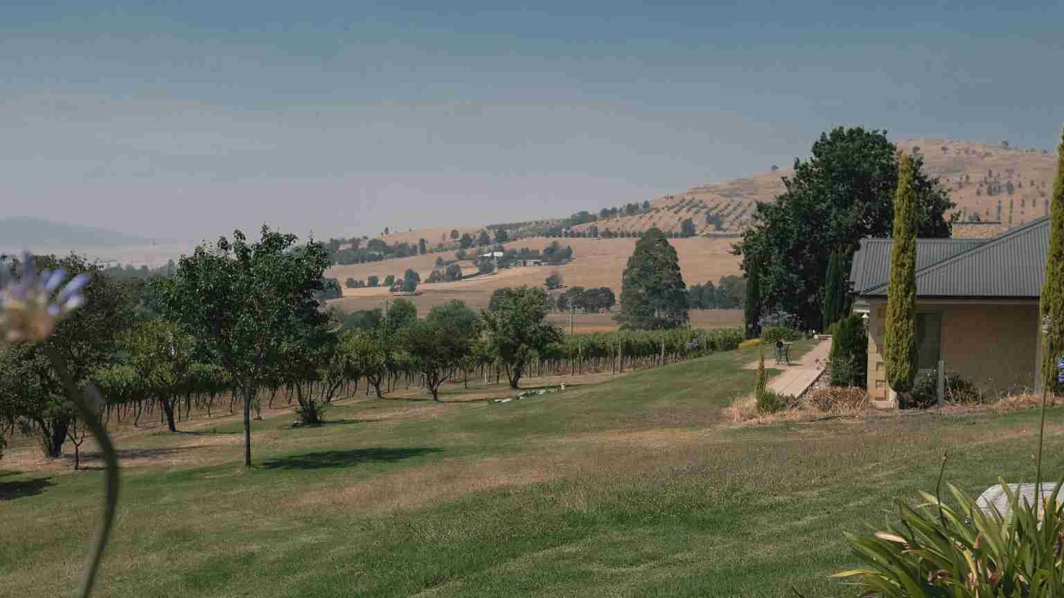 Wine estate in the Yarra Valley