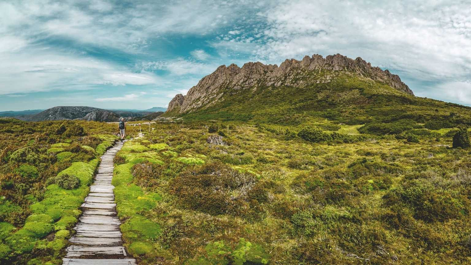 Boardwalk Amidst Moss Covered Landscape Against Cloudy Sky