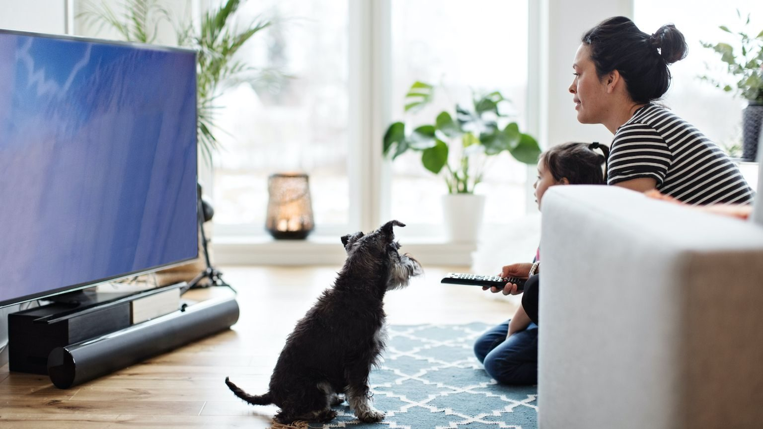 A woman watching TV with her young child and small dog