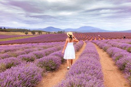 11 ideas for romantic getaways in Tasmania that will sweep you off your feet