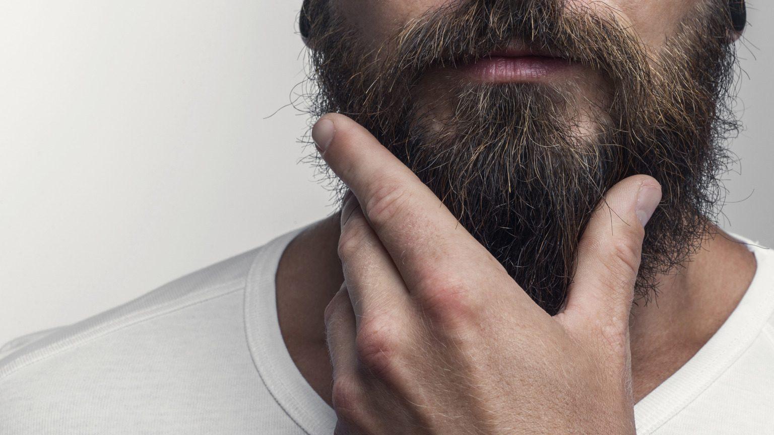 Touching his great beard
