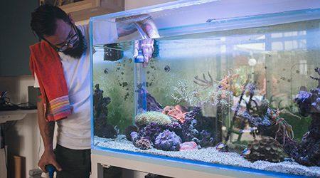 Renters insurance: Aquariums