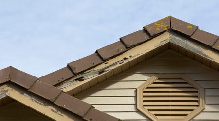Does homeowners insurance cover rodent damage?