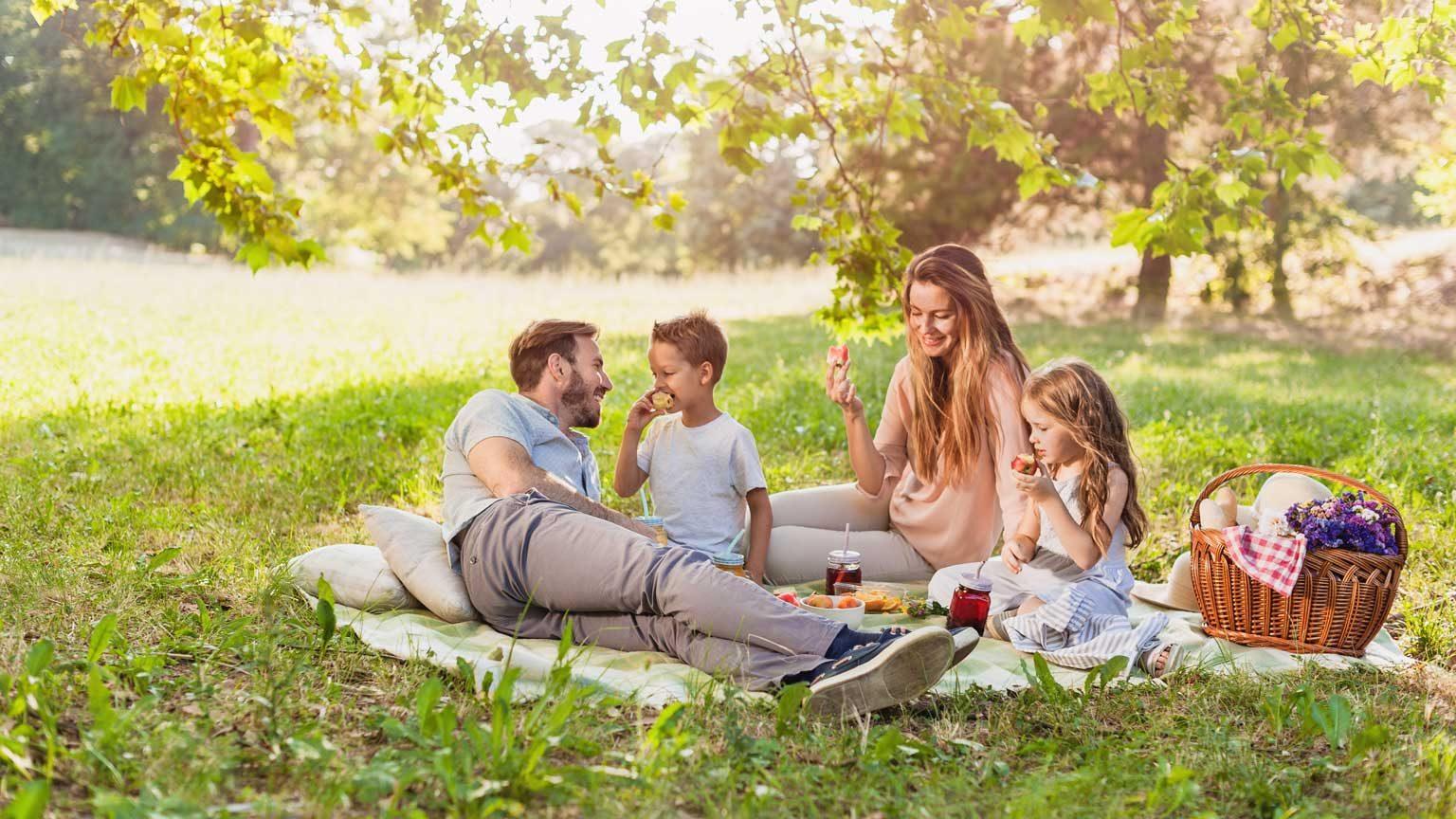Family enjoying summer picnic