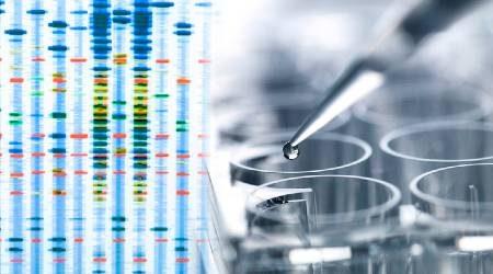Living DNA vs 23andMe