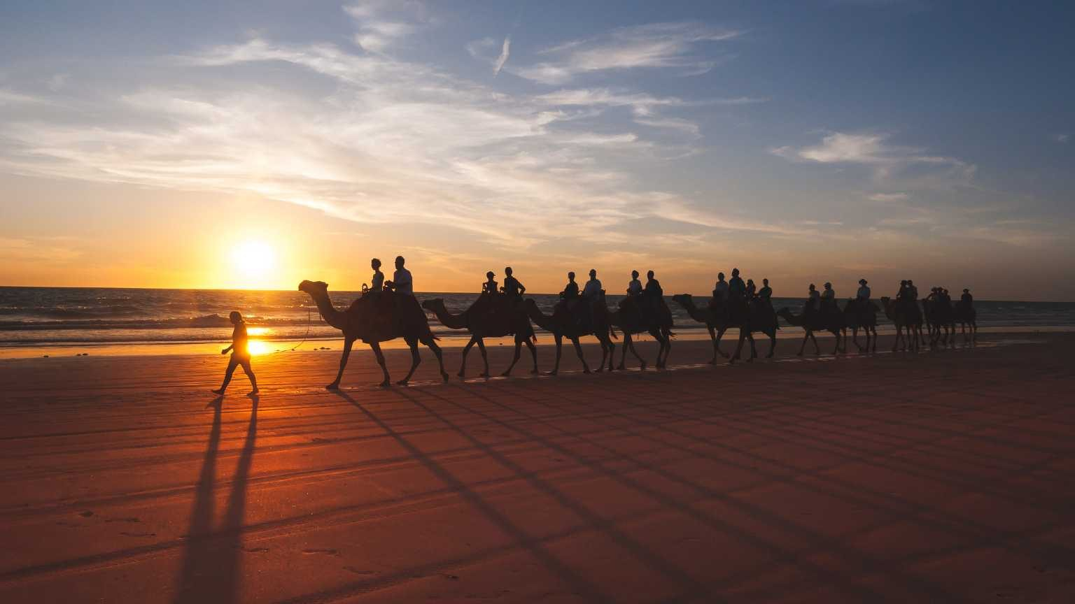 tourists taking a camel trip on the beach in broome, australia