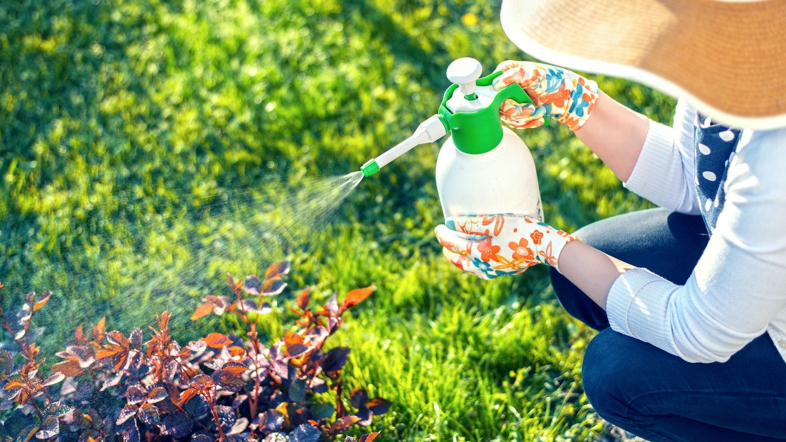 Woman spraying plants using water pulverizer