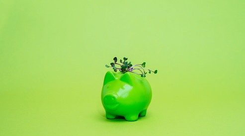 5 ways to go green with your money this Earth Day