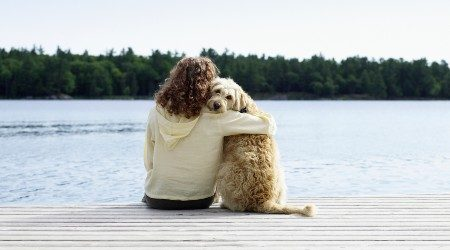 13 best pet-friendly accommodation options on the Gold Coast