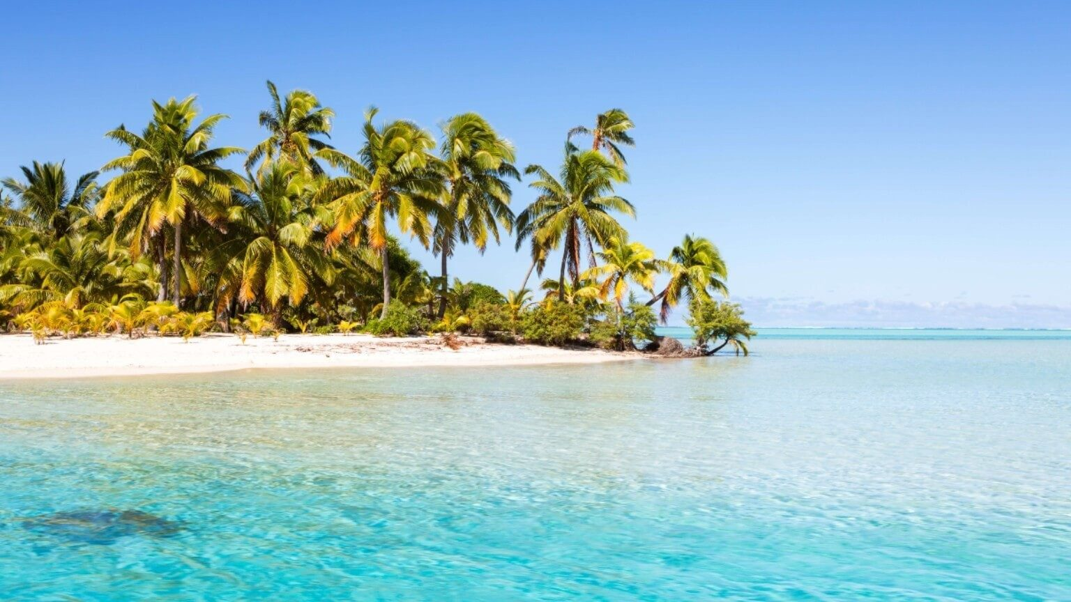 Beach with clear sand in the South Pacific