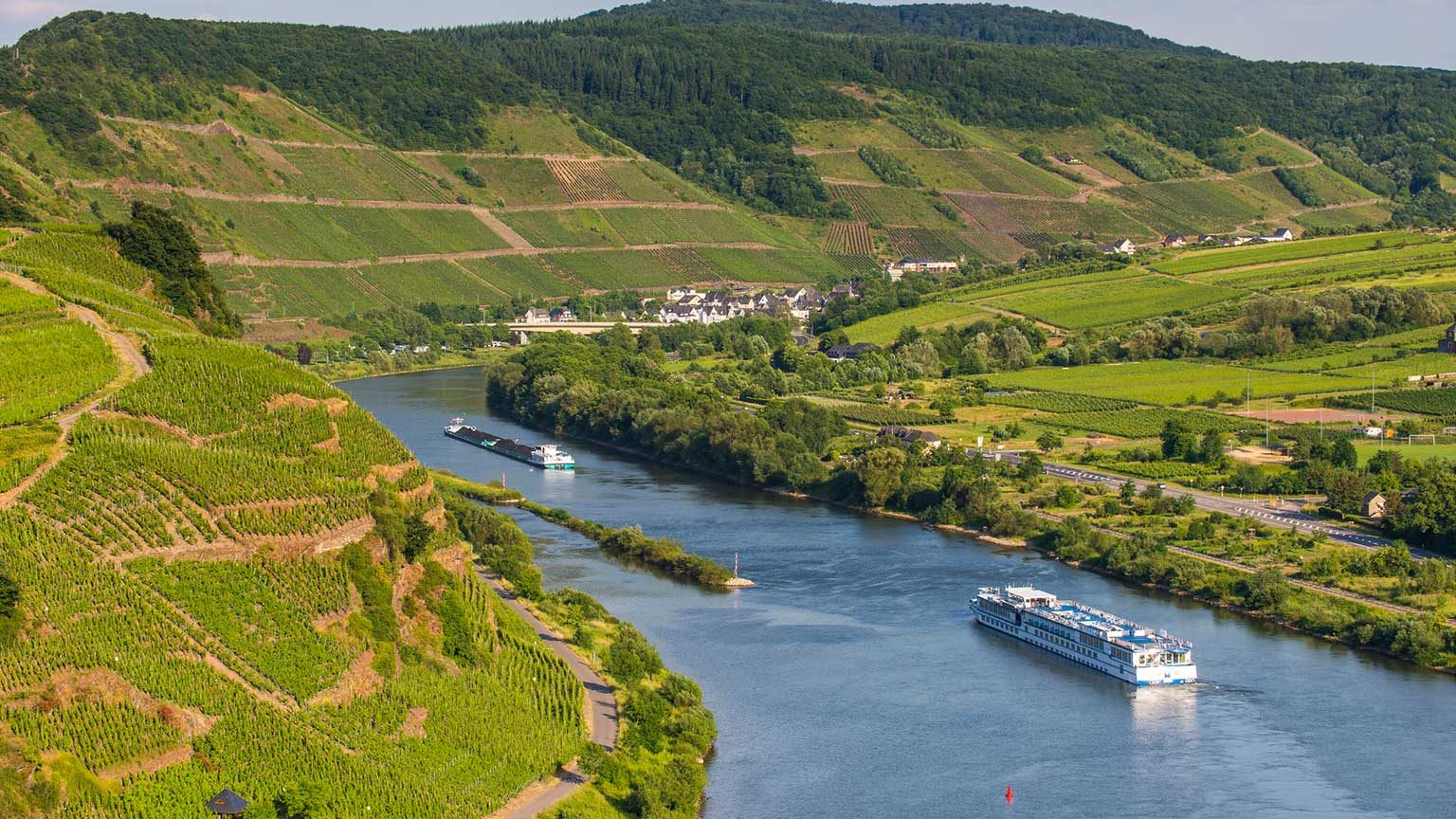 Aerial view of river cruises with hillside vineyards in Germany