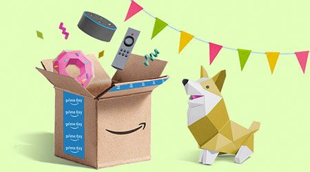 Amazon Corgi and Box
