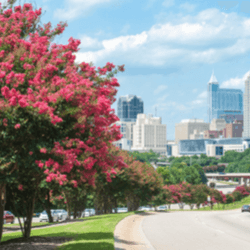 Car loans in North Carolina