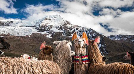 Envía dinero a Perú de manera segura