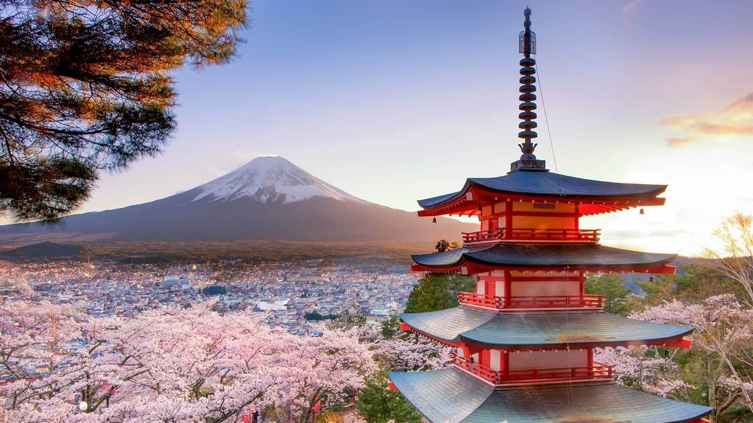 View of a red Chureito Pagoda and sakura trees with Fuji Mountain background in Japan