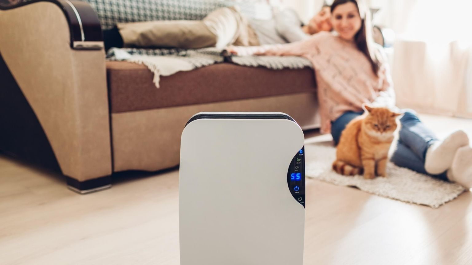 Couple in living room with air purifier