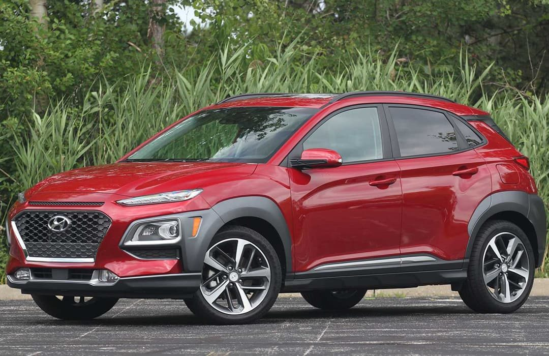 Hyundai Kona 2019 with bushes in the background