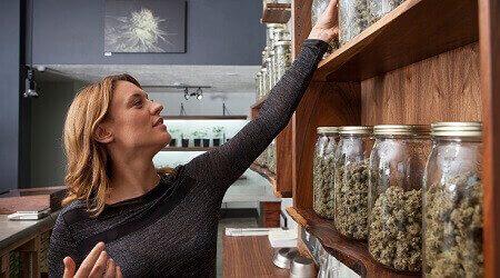 Cannabis financing in Nevada