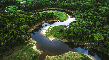 Best Amazon River cruise lines
