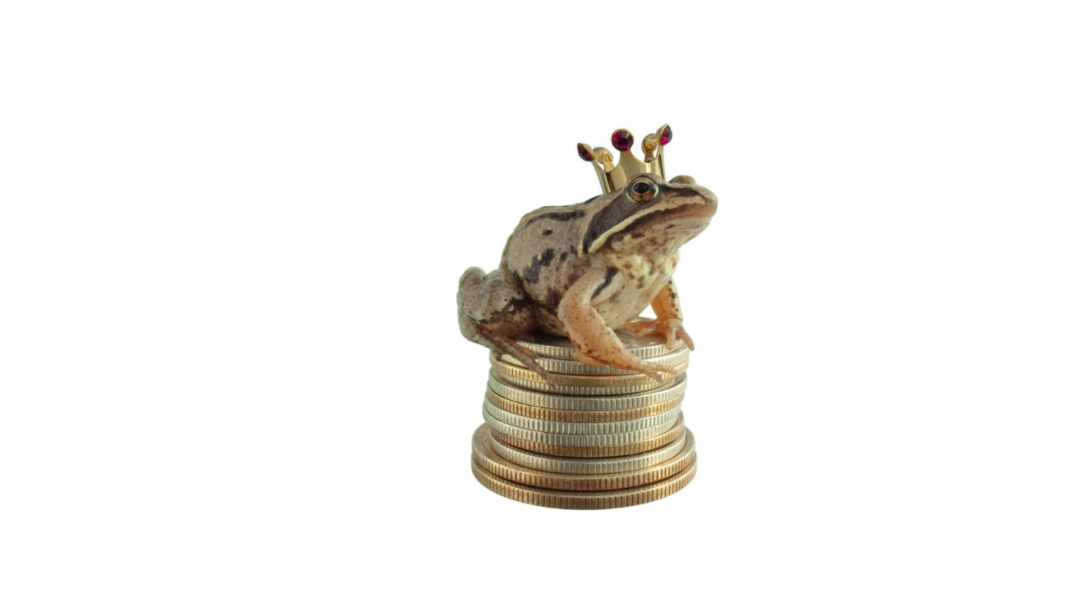 Frog king on coins