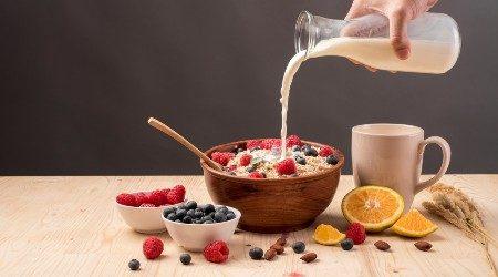 Where to buy oat milk online