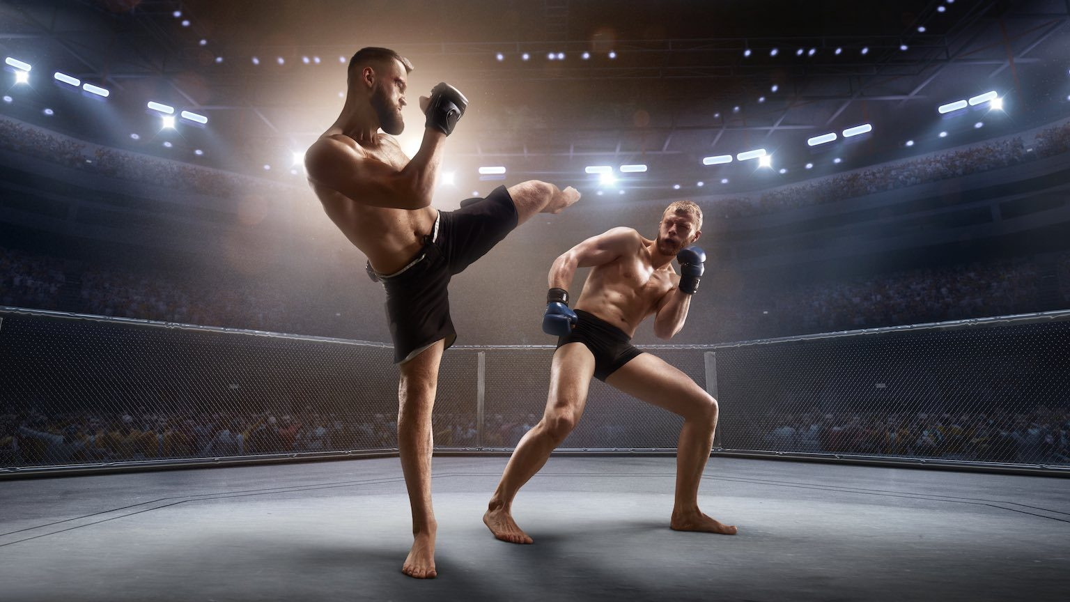 Muscular Mixed Martial Arts athletes fight in professional ring. Boxer attacks the opponent and strikes.