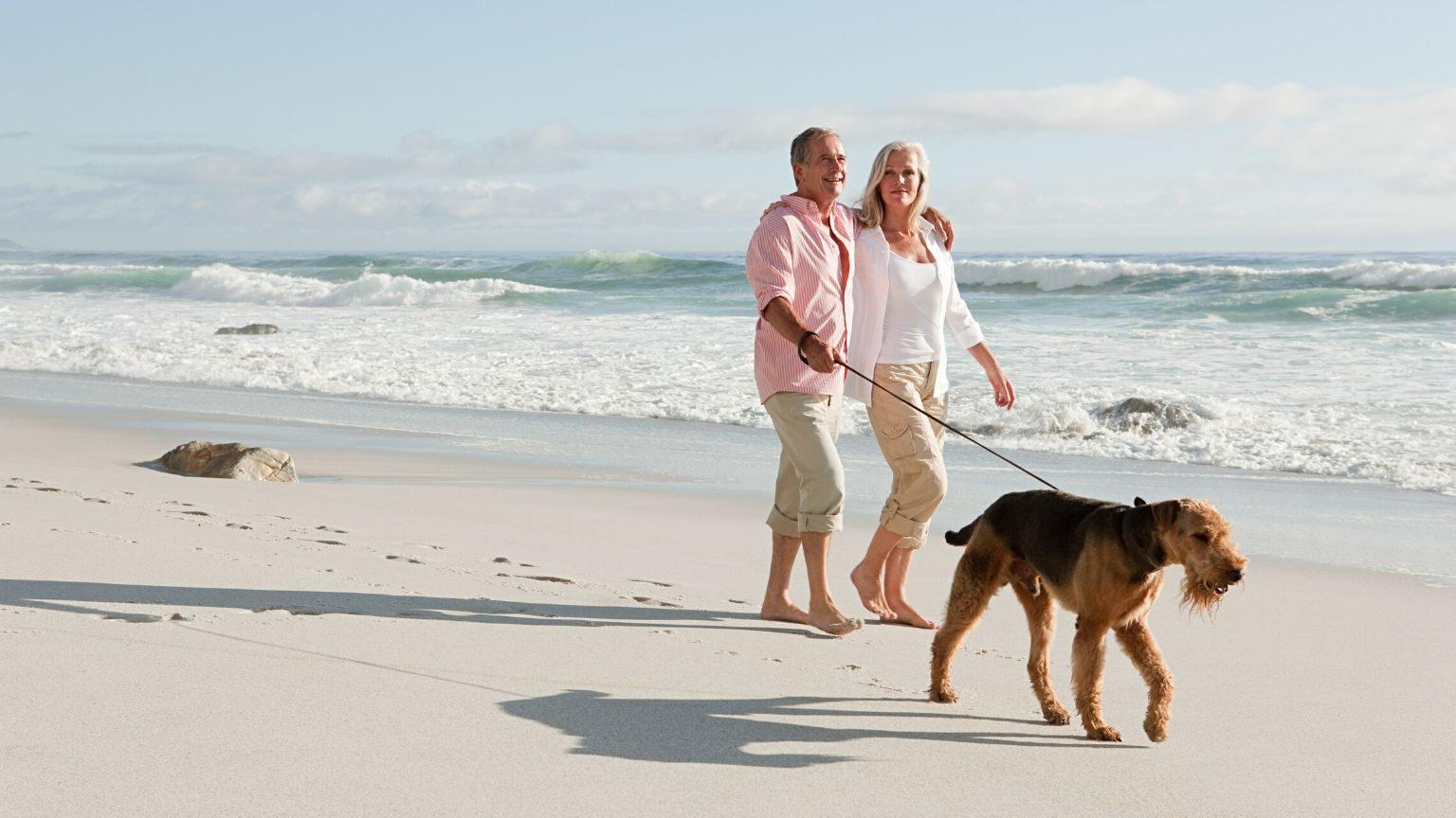 Couple walking dog on beach