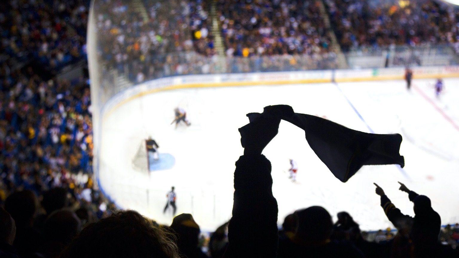Ice hockey game  cheering